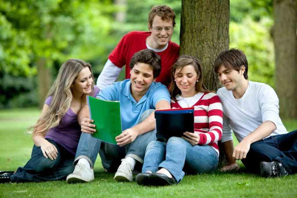 Cách xin học bổng du học New Zealand