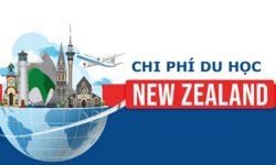 Chi phí du học New Zealand 2021 – Tổng hợp đầy đủ nhất