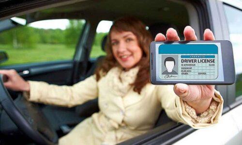Quy định sử dụng bằng lái xe Việt Nam ở nước ngoài và những thông tin cần biết