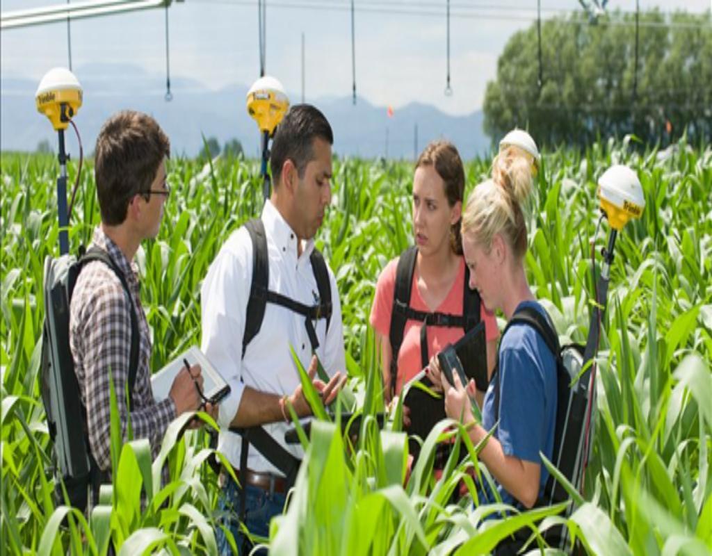Nông nghiệp là một ngành sản xuất cơ bản bao gồm nhiều ngành khác nhau.