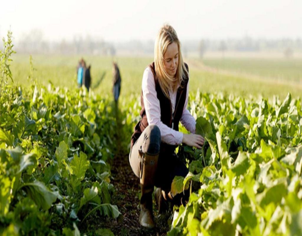 Bạn sẽ có tương lai rộng mở hơn khi đi du học ngành nông nghiệp.